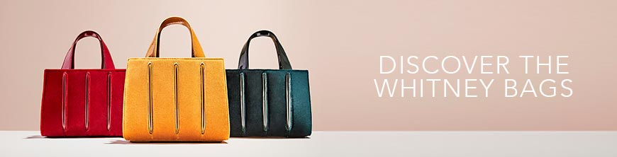 DISCOVER THE WHITNEY BAG