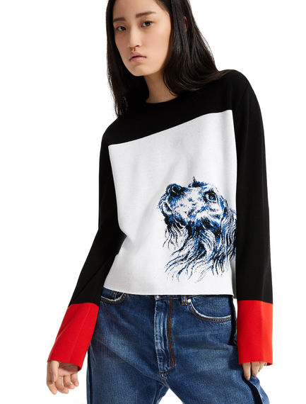 Dog Motif Jacquard Sweater Sportmax